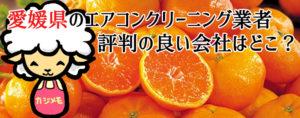 愛媛県のエアコンクリーニングで評判が良い会社ランキング
