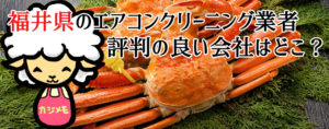 福井県のエアコンクリーニングで評判が良い会社ランキング