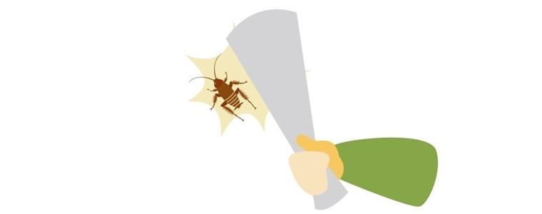 新聞でゴキブリを叩く