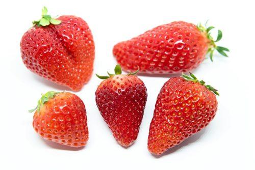 種類の違う苺の比較写真
