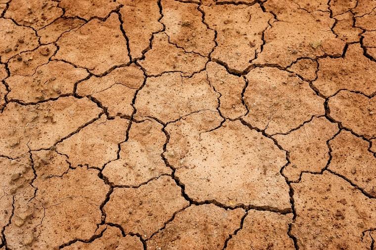 乾燥してひび割れた地面