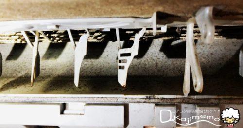 おそうじ革命体験談:エアコン内部の汚れ