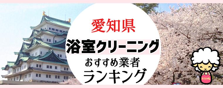 愛知県のお風呂掃除・浴室クリーニング業者おすすめランキング