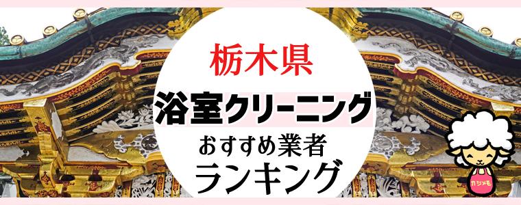 栃木県のお風呂掃除・浴室クリーニング業者おすすめランキング