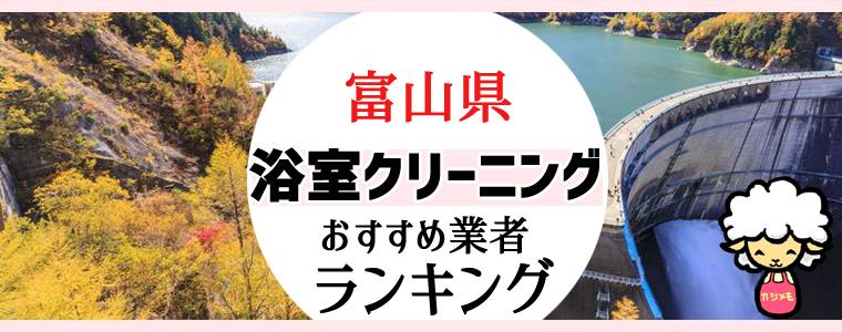 富山県のお風呂掃除・浴室クリーニング業者おすすめランキング