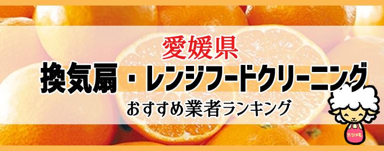 愛媛県の換気扇掃除・レンジフードクリーニング業者おすすめランキング